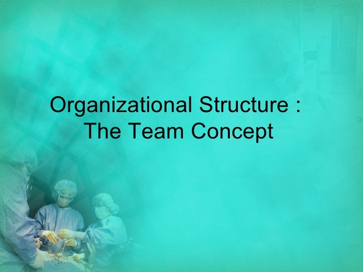 Organizational Structure :  The Team Concept