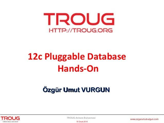 12c Pluggable Database Hands-On Özgür Umut VURGUN  TROUG Ankara Bulusmasi 16 Ocak 2014  www.ozgurumutvurgun.com