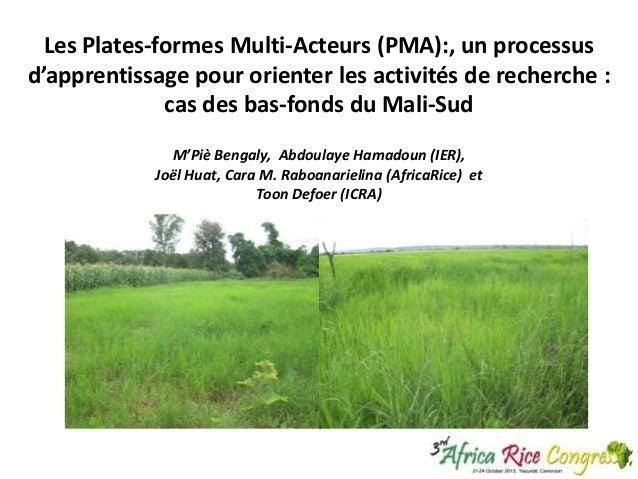 Les Plates-formes Multi-Acteurs (PMA):, un processus d'apprentissage pour orienter les activités de recherche : cas des ba...