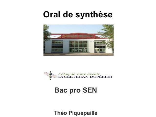Oral de synthèse Bac pro SEN Théo Piquepaille