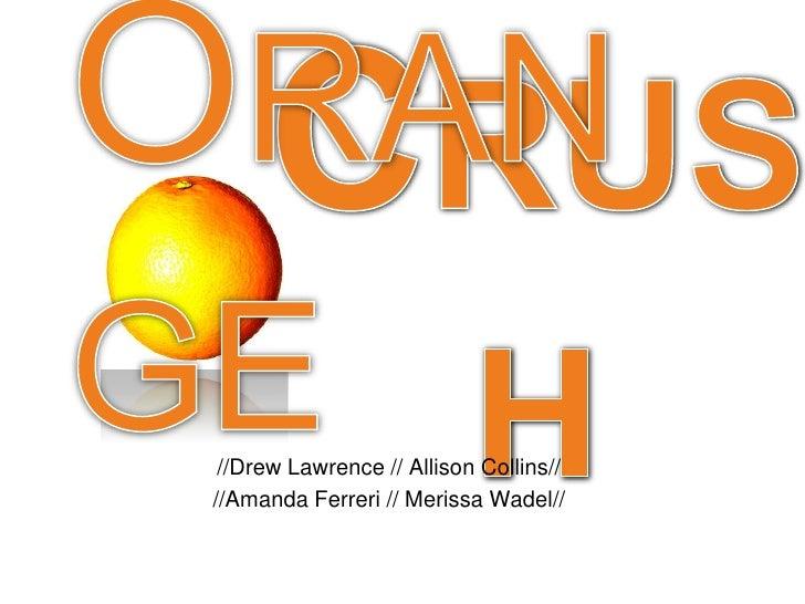 Orange<br />Crush<br />//Drew Lawrence // Allison Collins//<br />//Amanda Ferreri // Merissa Wadel//<br />