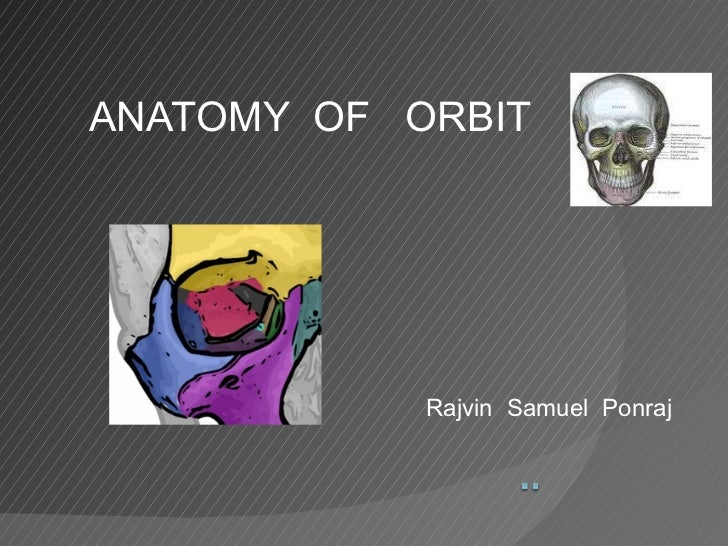 ANATOMY  OF  ORBIT  Rajvin  Samuel  Ponraj