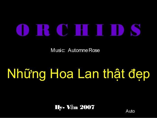 O R C H I D S Những Hoa Lan thật đẹp Hy- V n 2007ă Music: AutomneRose Auto