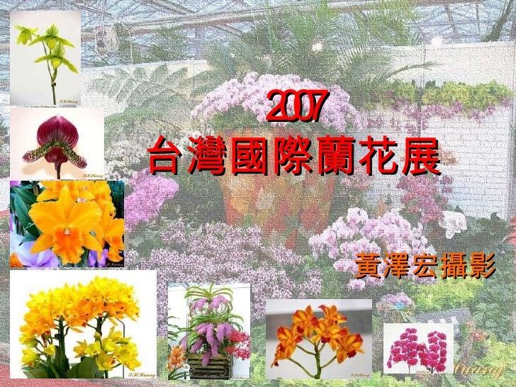 2007 台灣國際蘭花展 黃澤宏攝影