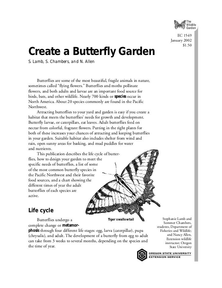 OR: Create a Butterfly Garden