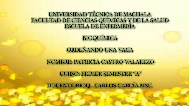 UNIVERSIDAD TÉCNICA DE MACHALA FACULTAD DE CIENCIAS QUIMICAS Y DE LA SALUD ESCUELA DE ENFERMERÍA BIOQUÍMICA ORDEÑANDO UNA ...