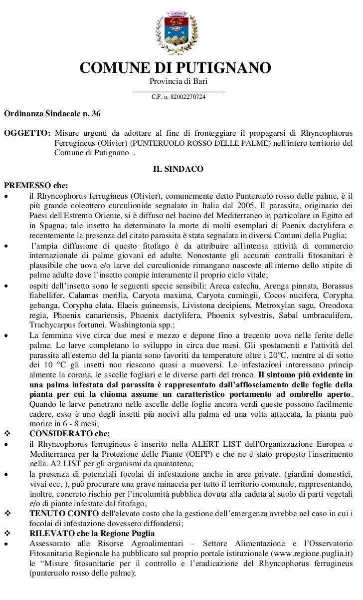 Ordinanza sindacale punteruolo rosso 36 2012
