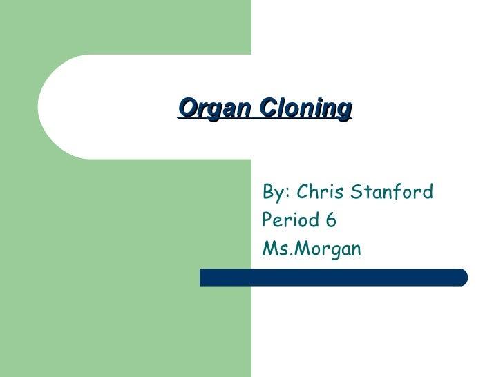 Organ cloning