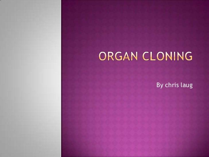 Organ cloning<br />By chrislaug<br />
