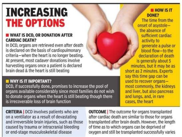 an introduction to the importance and positive effects of organ donation Organ donation is fast becoming an important most organ donation for organ the use of transportation theory has a positive effect on.