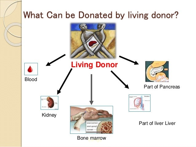 donating organs after death essay Yes, undoubtedly islam supports donation of organs after death this is because there is a concept in islam, called sadqah-e-jariyah, which means continued charity or on-going charity - this is charity which comes to use for people even after the person who has made the donation has passed away.
