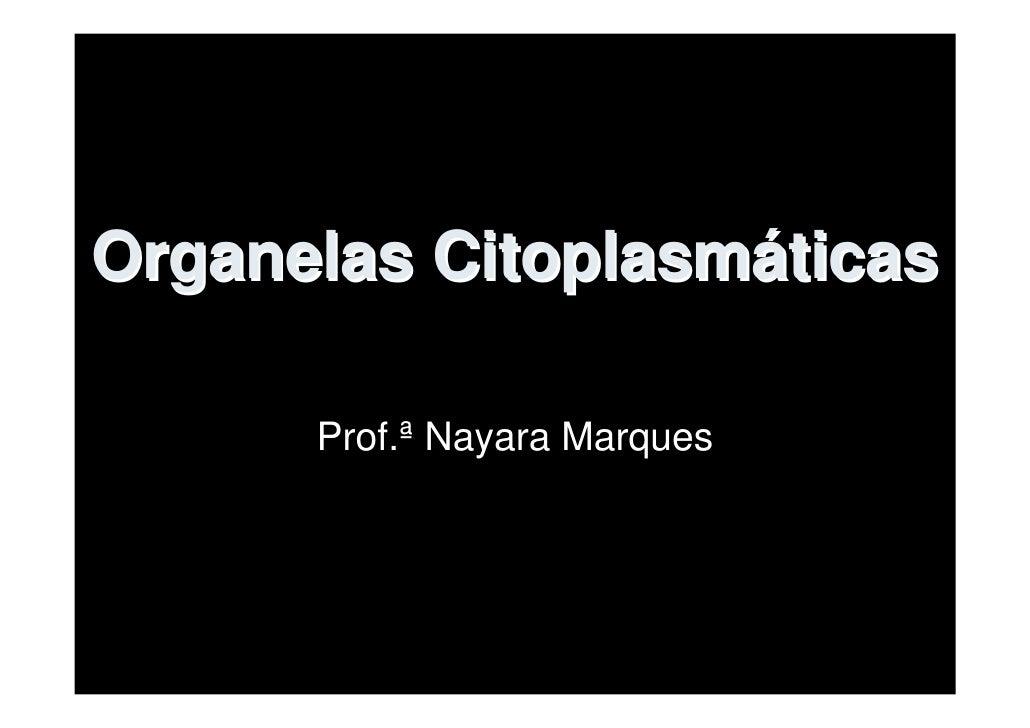 Organelas Citoplasmáticas        Prof.ª Nayara Marques