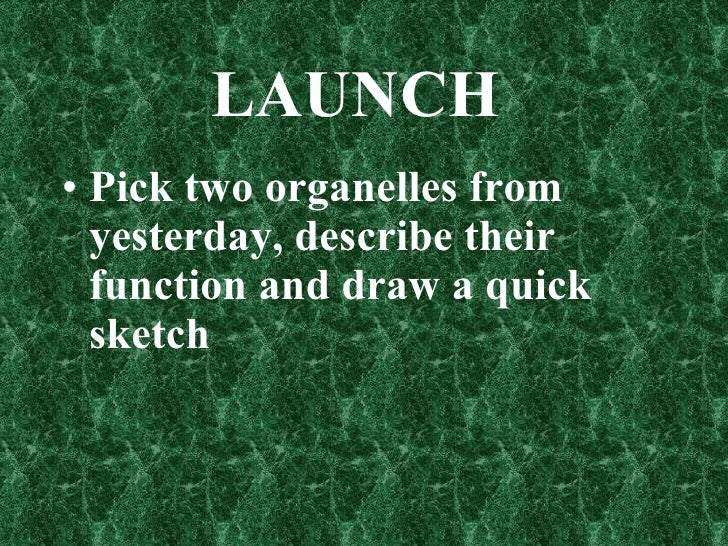 LAUNCH  <ul><li>Pick two organelles from yesterday, describe their function and draw a quick sketch </li></ul>