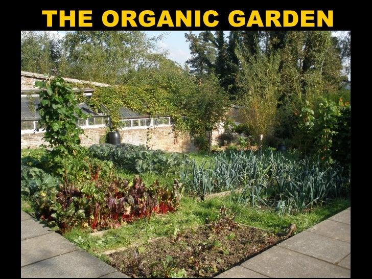 Pestalozzi Organic Garden