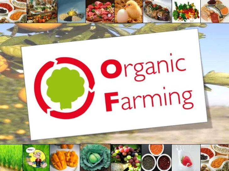 • Introduction• Integration of systems• Organic Farming in India• Clean Greens• Alternate Energy Use• Bt Cotton• 2 Case St...