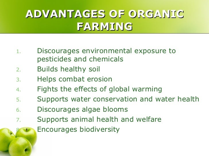 Advantages And Disadvantages of Organic Farming You Must Know About