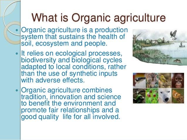 Science Fair Organic Food