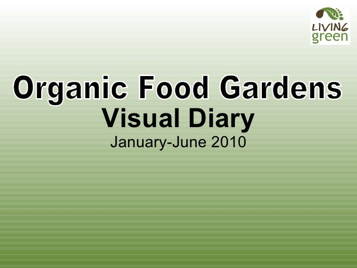 Organic Food Garden Visual Diary Small Show
