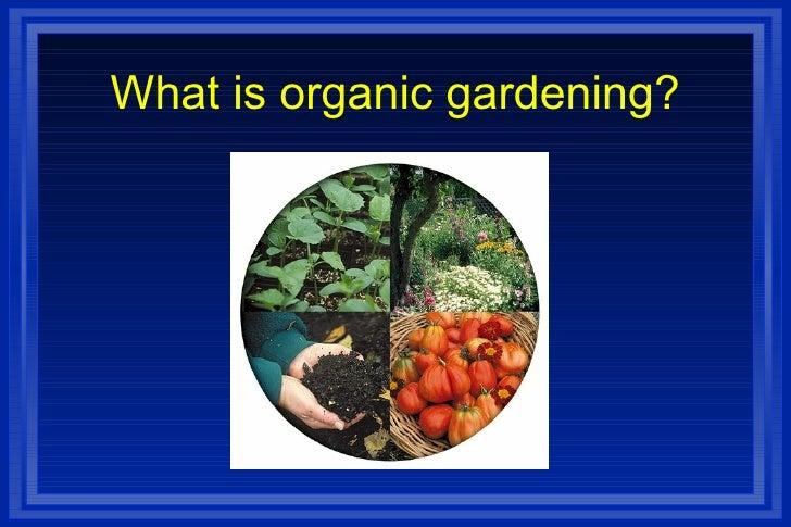 Organic Gardening Week 1