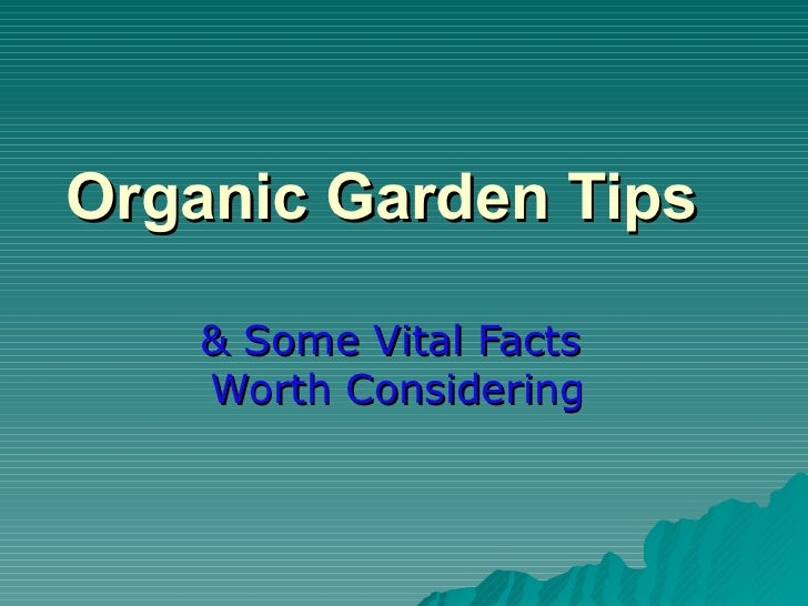 Organic Garden Tips   & Some Vital Facts  Worth Considering