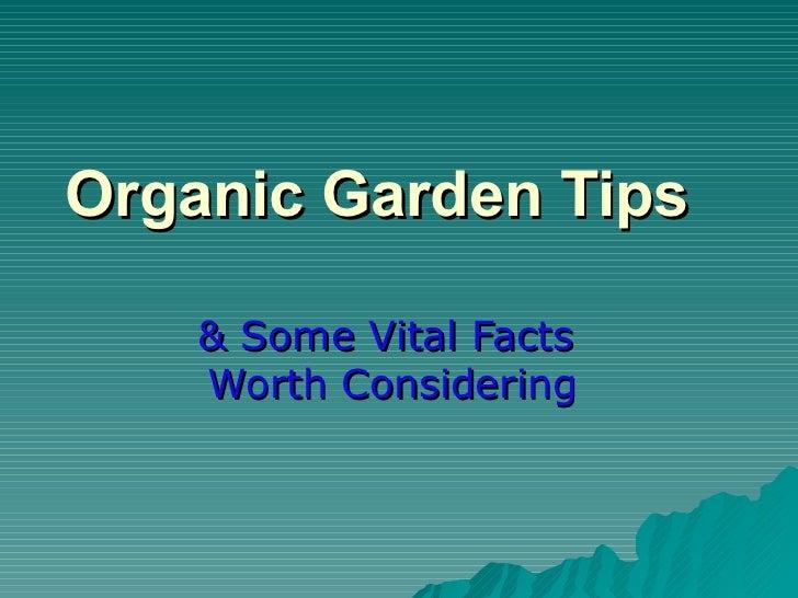 Organic Garden Tips
