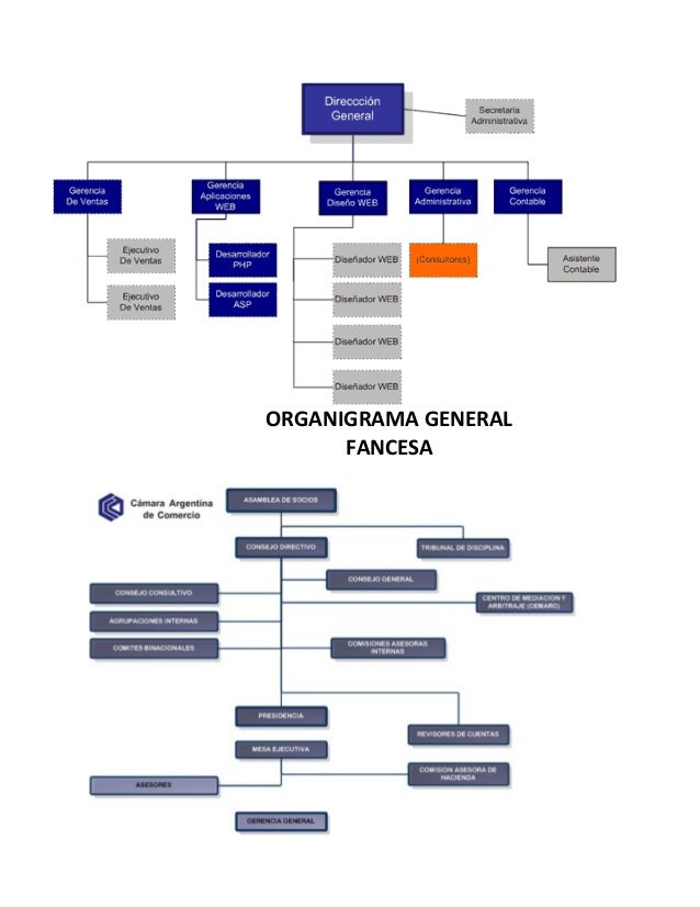ORGANIGRAMA GENERAL  FANCESA