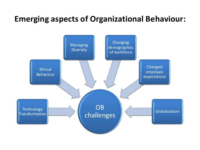 emerging aspects of organisational behaviour with case study Transformational leadership: the impact on organizational and personal outcomes roger j givens emerging leadership journeys, vol 1 iss 1, 2008, pp 4-24.