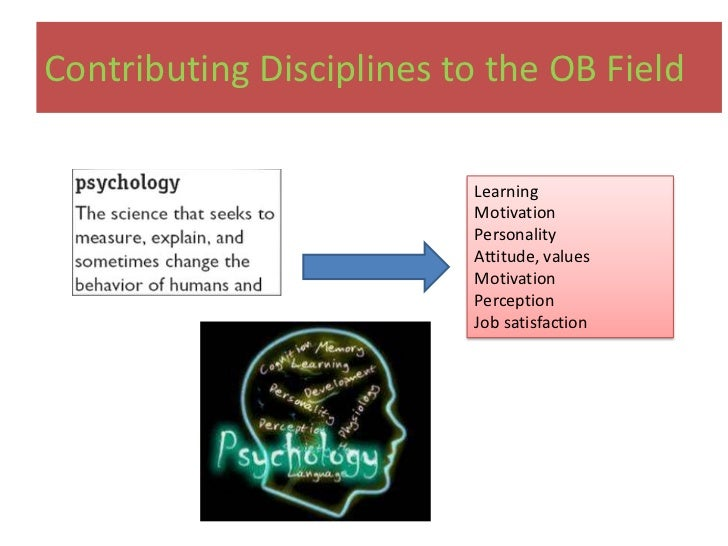 organization behavior disciplines ob disciplines Organisational behaviour contributin g disciplines to organizatio nal behavior cms, section f, iiird semester what is organisational behaviour groups and structure have on behavior within organizations for the purpose of applying such knowledge toward improving an organization's.
