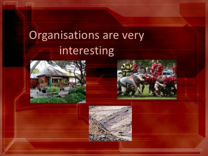 Organisations are very interesting