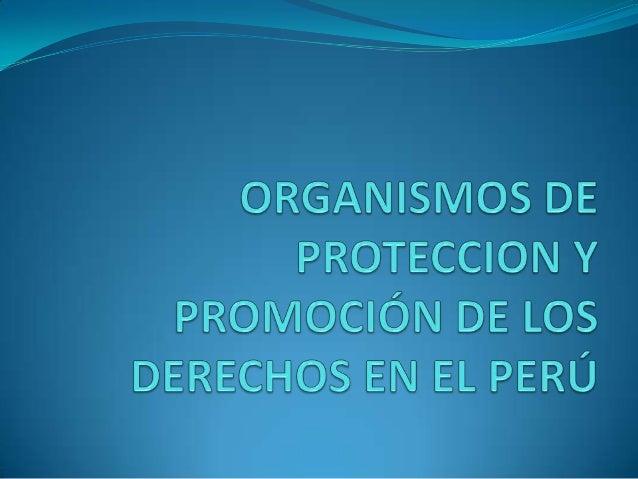 Organismos de proteccion y promoción de los derechos