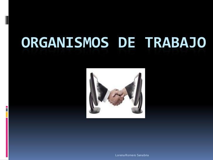ORGANISMOS DE TRABAJO          Lorena Romero Sanabria