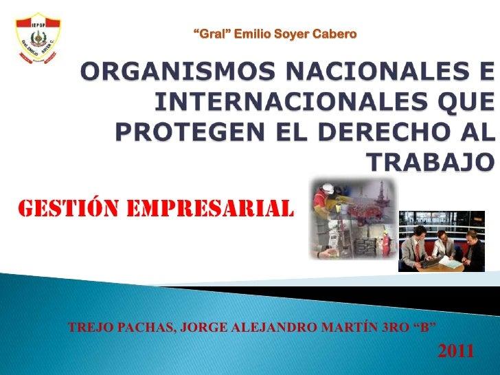 Organismos nacionales e internacionales que protegen el derecho al trabajo