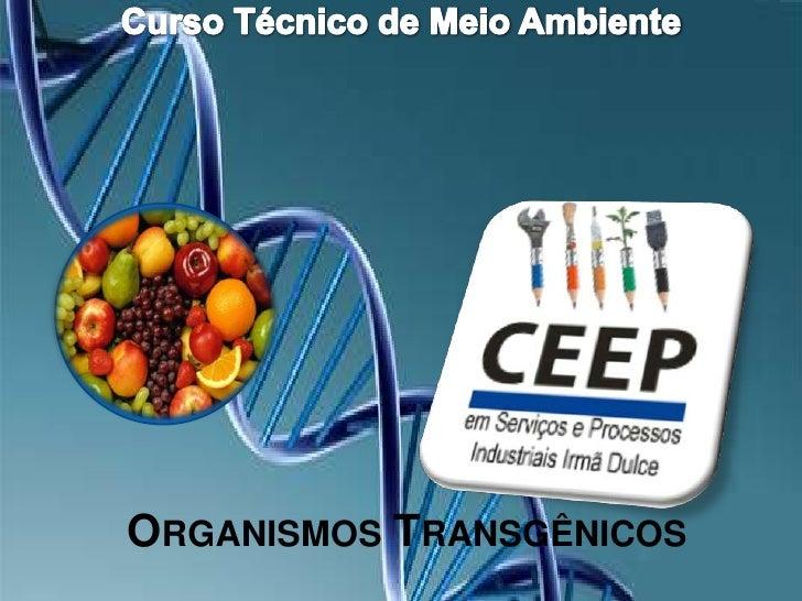 Curso Técnico de Meio Ambiente<br />Organismos Transgênicos<br />
