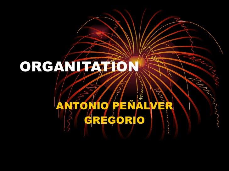 ORGANITATION ANTONIO PEÑALVER GREGORIO