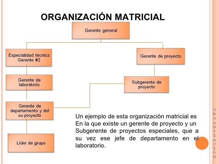 Todo lo relacionado con organizacion for Organizacion de un vivero