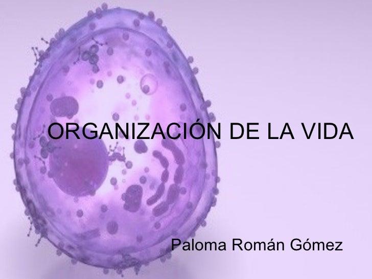 ORGANIZACIÓN DE LA VIDA Paloma Román Gómez