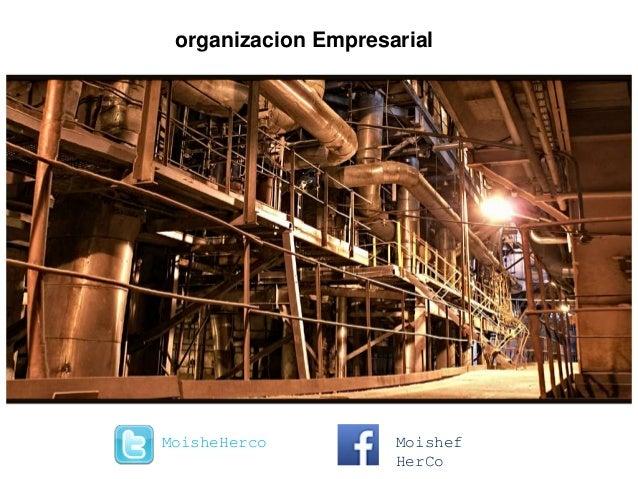 organizacion Empresarial MoisheHerco Moishef HerCo