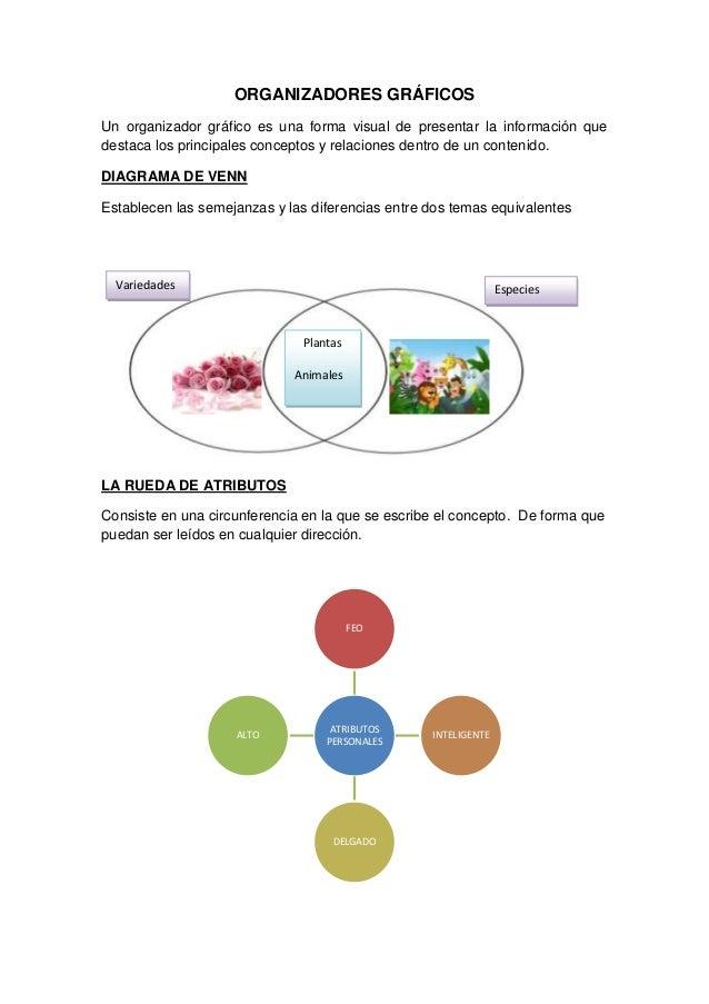 ORGANIZADORES GRÁFICOS Un organizador gráfico es una forma visual de presentar la información que destaca los principales ...