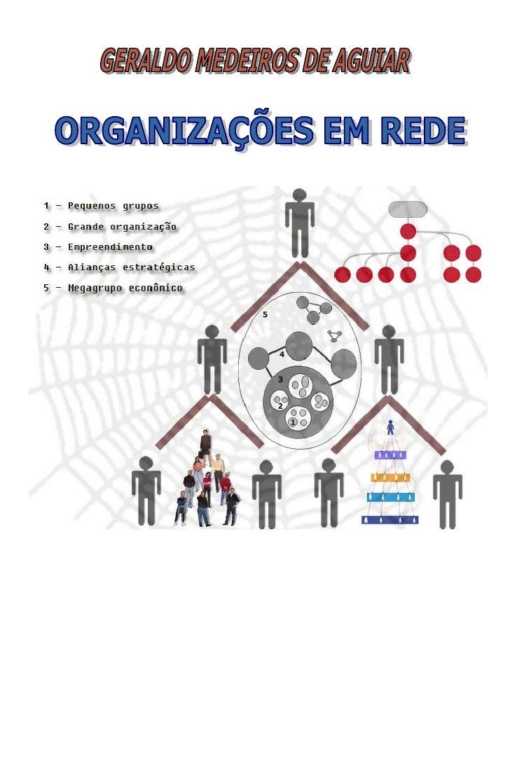 Organizações em Rede. Como são e como funcionam