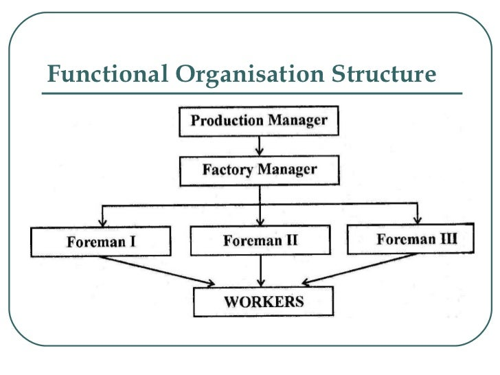 functional structure An organizational structure is a system for how activities are directed in order to achieve an organization's aims topics  is a functional structure.