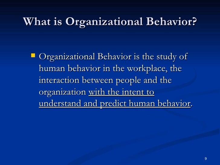 organizational behavior terminology essay
