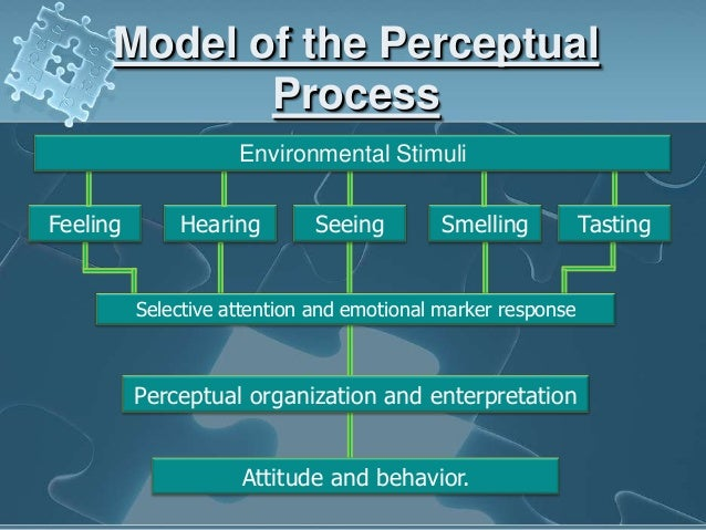 Organizational Behavior Essay