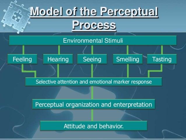 organizational behavior essays