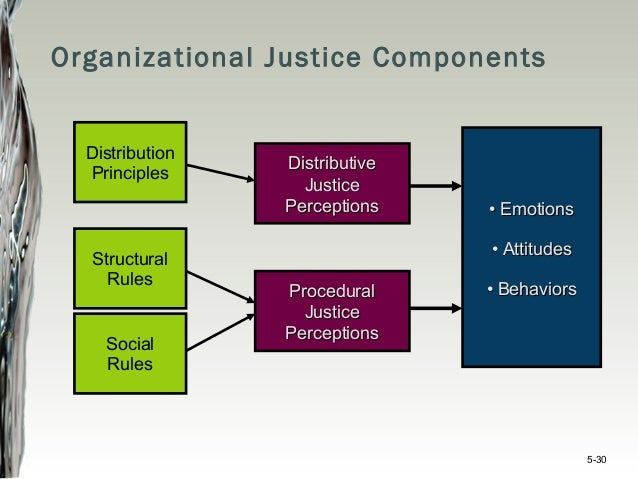 organizational justice research paper Free organizational papers, essays, and research the truth of organizational justice - the field of organizational behavior has become more dynamic.