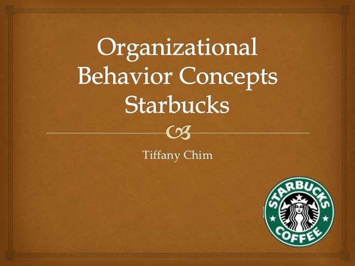Organizational behavior concepts