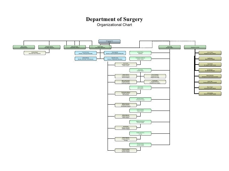 Department of Surgery Organizational Chart Richard Reznick Chair Bryce Taylor Associate Chair Robin Richards Vice-Chair, C...