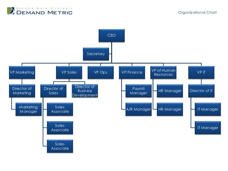 department structure template