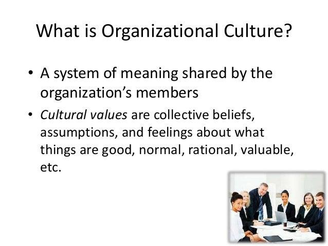 employee organizational culture essay