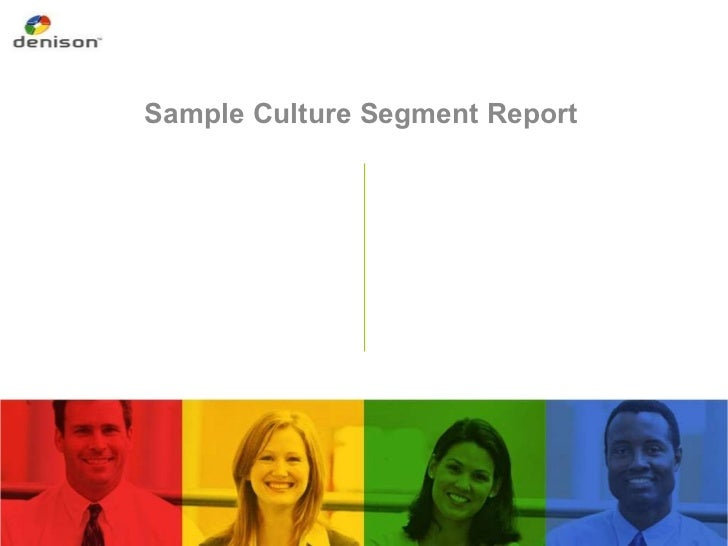 Denison Organizational culture sample survey report