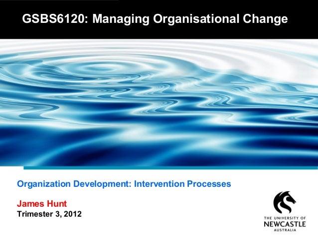Organization Development - Intervention Processes